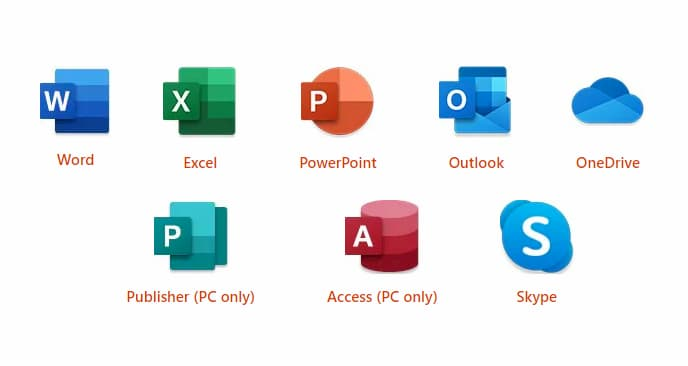 Basic Digital Skills - Microsoft Office Skills
